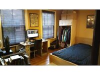 Spacious room with private bathroom & WC in Jericho house share from early January to end of March
