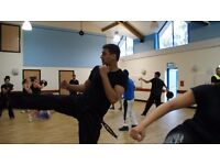 FREE Martial Arts Trial Class