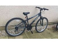 X rated mountain bike with expensive Shimano wheels