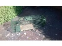 Fox/ Feral Cat trap