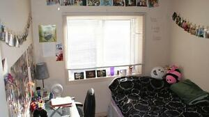 ATTN Students: 347 Spruce Affordable 2 and 5 Bedroom units! Kitchener / Waterloo Kitchener Area image 3