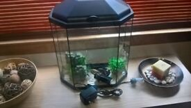 30l fish tank aquarium with filter and accessories