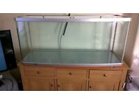 4ft arcrylic bow front aquarium
