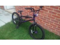 BMX Bike - Blank Ammo - Black/Purple