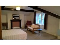 Greenhead Park, Attractive, Large Attic Room with Kitchen in Licensed HMO