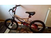 """BMX bike. Boys 18"""" wheels"""