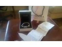 Pandora Bracelet ,5 Charms ,In The Box With Warranty