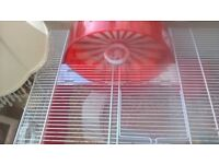 female white dwarf hamster and cage