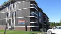 One Bedroom - Lawson Heights