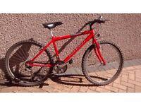 Raleigh Firefly mountain style bike