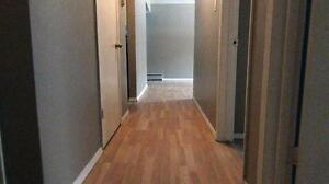 Newly renovated 2BD for just $1085 plus free internet!!! SD $350 Edmonton Edmonton Area image 3