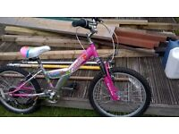 Childs Bike in vgc ...only used a few times £29.00