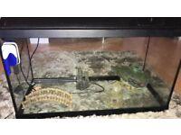 100ltr Fish Tank.