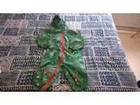 Boys Mountain Warehouse rain suit. For 2 year old boy.