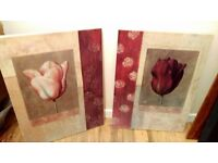 Tulip rose canvases