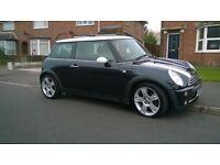 2005-mini cooper 1.6 black full chilli pack cooper-s alloys lovely little car drives great £1695