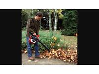 Leaf blowing and vacuuming