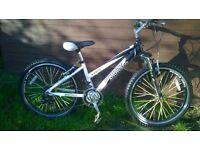 girls ammaco ethos aluminium frame mountain bike