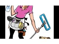 Trustworthy reliable experienced cleaner