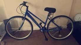 """Apollo Excelle Womens Hybrid Bike - 14"""""""
