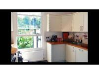 Beautiful Herne Hill flat double room to rent