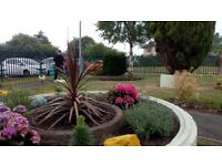 Gardening Services and Property Void Maintenace/ Landscaping / Fencing / Painting /Garden Clearence