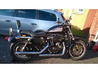 2010 Harley-Davidson XL 883 R SPORTSTER - low miles