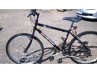 LADIES ADULT MOUNTAIN BIKE good condition suit lady 5.2 ft to5. 7 ft