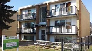 Bachelor Suite -  - Brook Manor - Apartment for Rent Edmonton