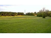 Whaplode grazing land to let...