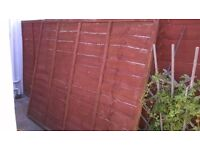 Great condition lap fence panels for sale - only £5.00 a panel, Retail price £17.50