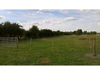 5 acres grazing land to let at dn10 5dg £60 per week