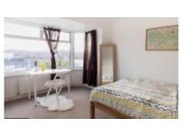 Lovely double room to let
