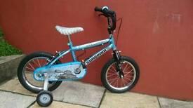 Raleigh Sunbeam Boys bike