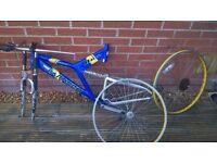 saricen bike frame and wheels