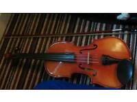 Full size Knight Student Violin