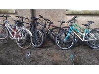 MOUNTAIN BIKE ADULT LADIES AND GENTS ALL £35 EACH OR £65 for any 2 bikes