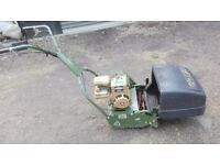 Webb Petrol Self-Propelled Stripes Lawnmower