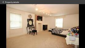 X2 Bedrooms for rent in gorgeous house.