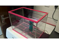 Glass Fish Tank and Filter for sale