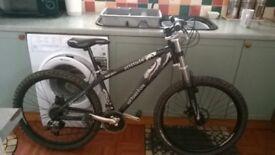 sliverfox custom mountain bike