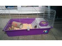 2 Guinea pigs, cage, accessories & run £50