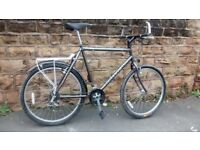 "RALEIGH NORTH CAPE MTB large 23"" frame"