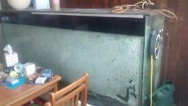 Six foot fish tank