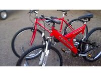 LADIES AND GENTS ADULT MOUNTAIN BIKES BOTH ARE IN GOOD CONDITION 26 in wheels