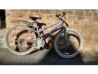 RALEIGH MANTIS FRONT SUSPENSION MTB