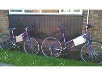 Bikes for sale in braintree