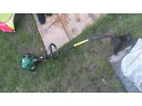 petrol strimmer, hedge cutters. and extendable loppers