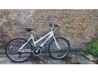 Bargain: bike + helmet + lock all for 110£