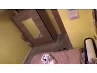 Chesterfield double room to rent. No deposit. All bills included. Unlimited Internet